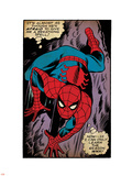 Marvel Comics Retro: The Amazing Spider-Man Comic Panel, Crawling (aged) Plastic Sign