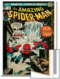 Marvel Comics Retro: The Amazing Spider-Man Comic Book Cover No.151, Flooding (aged) Print