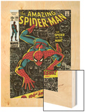 Marvel Comics Retro: The Amazing Spider-Man Comic Book Cover No.100, 100th Anniversary Issue Wood Print