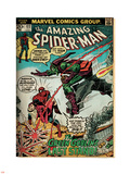 Marvel Comics Retro: The Amazing Spider-Man Comic Book Cover No.122, the Green Goblin (aged) Plastic Sign