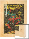 Marvel Comics Retro: The Amazing Spider-Man Comic Book Cover No.100, 100th Anniversary Issue (aged) Wood Print