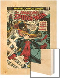 Marvel Comics Retro: The Amazing Spider-Man Comic Book Cover No.123, Luke Cage - Hero for Hire Wood Print