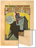 Marvel Comics Retro: The Amazing Spider-Man Comic Panel, the Vulture's Prey (aged) Wood Print