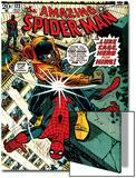 Marvel Comics Retro: The Amazing Spider-Man Comic Book Cover No.123, Luke Cage - Hero for Hire Print