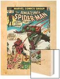 Marvel Comics Retro: The Amazing Spider-Man Comic Book Cover No.122, the Green Goblin's Last Stand! Posters