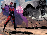 AVX: Vs No.1: Magneto Plastic Sign by Adam Kubert