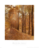 Walking Trail Poster by Barbara Kalhor