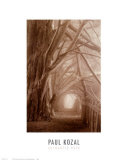 Enchanted Path Poster by Paul Kozal