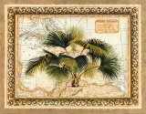 West Indies Palm Prints