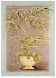 Jarrones Plantas II Art by L. Romero