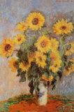 Claude Monet - Sunflowers, c.1881 Plakáty