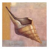 Small Snail Print by A. Lopez