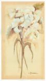 Lilies Bouquet II Posters by Luis Romero