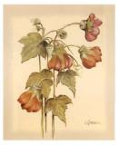 Flores Colgantes IV Print by Luis Romero