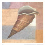 Small Snail Poster by A. Lopez