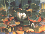 Waterlilies Prints by Karl Schmidt-Rottluff