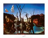 Swans Reflecting Elephants, c.1937 Art by Salvador Dalí