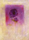 Lilac Anemone Prints by Matilda Ellison