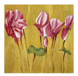 Pink Cyclamens Prints by Teo Malinverni