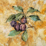 Fruit Frescos IV Print by Jenny Mayfeld