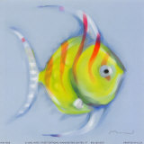 Striped Angel Fish Prints by Anthony Morrow