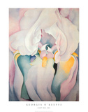 Light Iris 1924 Prints by Georgia O&#39;Keeffe