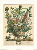 December Prints by Robert Furber