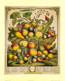 Fruits of the Season Summer Print by Robert Furber
