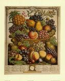 Früchte der Saison: Winter Poster von Robert Furber