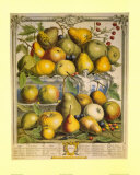 Fruits of the Season Spring Posters by Robert Furber