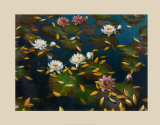 Lily Pad II Prints by Elise Lunden
