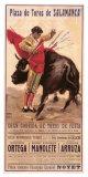 Plaza de Toros de Salamanca Giclee Print