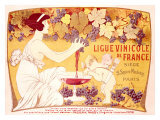 Ligue Vinicole de France Reproduction procédé giclée par Manuel Orazi