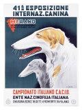 Campionato Italiano C.A.C.I.B. Giclee Print