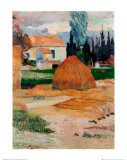 Ferme a Arles Posters by Paul Gauguin