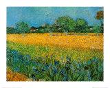 Vista de Arles con lirios Pósters por Vincent van Gogh