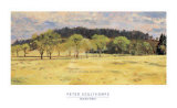 Buck Run Willows Print by Peter Sculthorpe
