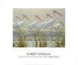 Bounty of the Wetlands (detail) Prints by Robert Bateman