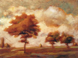 Tuscan Afternoon II Prints by P. Patrick