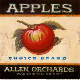Manzanas Choice Lámina por Angela Staehling