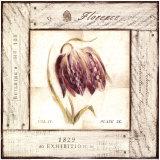 Fritillaria Exhibition Poster by Lauren Hamilton