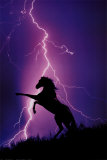 Lightning and Silhouette of Horse Plakaty