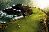 Pole golfowe, wybrzeże Hawajów Plakaty