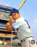 Ron Santo - With Bat, posed Photo