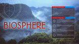 Biosphere Art