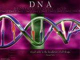 ADN Póster