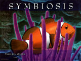 Symbiosis Plakaty
