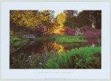 Secret Garden I Prints by Bent Rej
