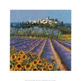 Stadt auf dem Hügel, Provence Kunstdruck von Hazel Barker
