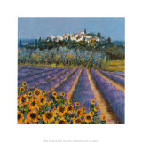 Hill Town, Provence Print by Hazel Barker